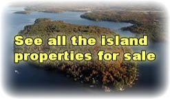 nh lakes region island properties